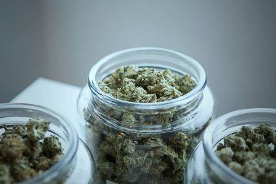 Affinage et conservation du cannabis